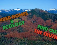 The Truth About Ecology and Timber/Log Homes